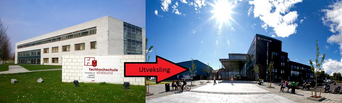 Mario Klohn var på utveklsing frå Fachhochschule Stralsund til UiA Grimstad i studieåret 2012/13.