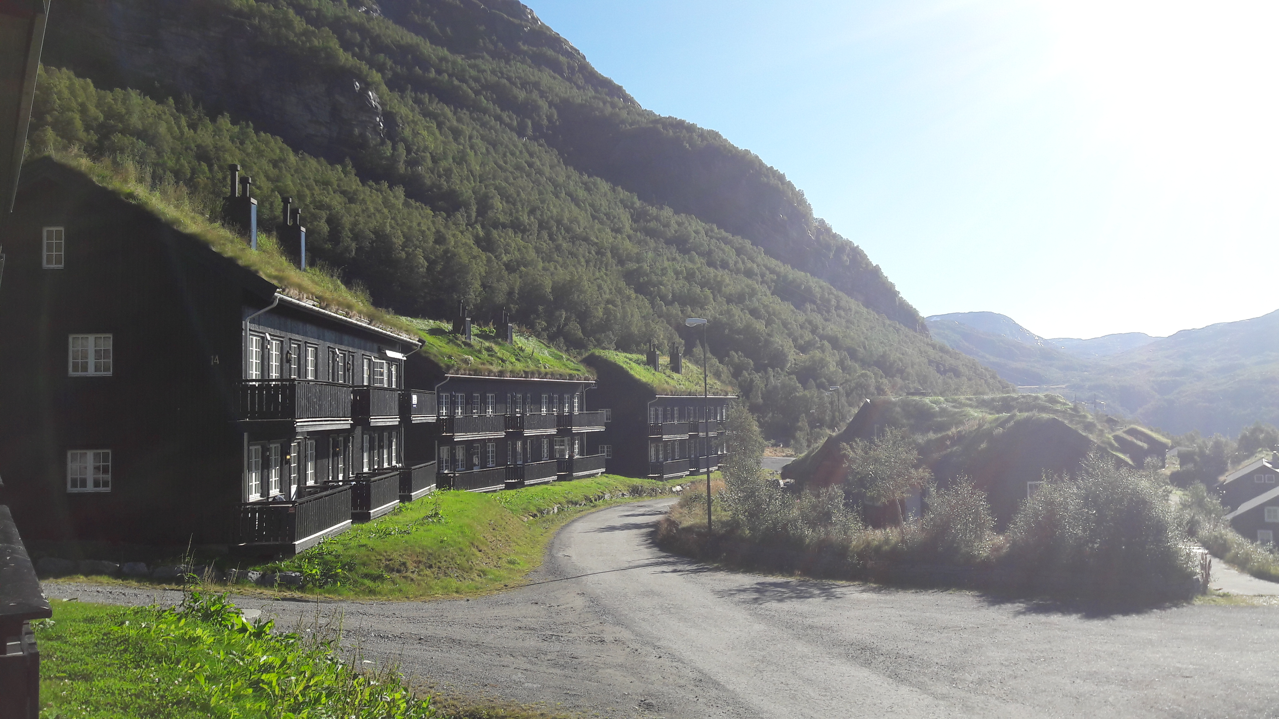10 Facts You Didn't Know About Norwegians